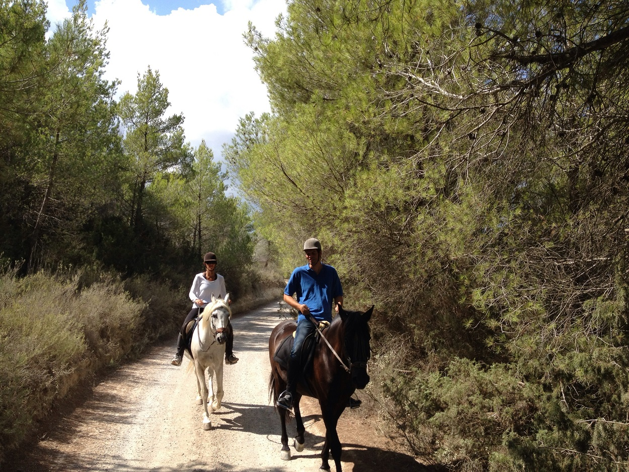 Pferd reiten | HETibiza